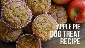 Apple Pie Dog Treats