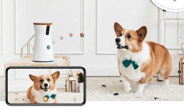 Furbo Dog Camera - Treat Tossing Camera