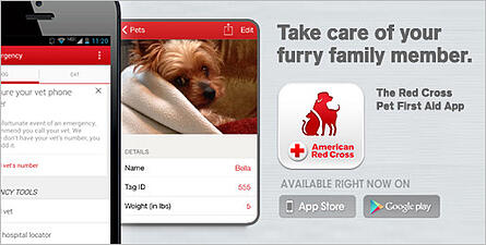 Pet First Aid Phone App for Pet Owners